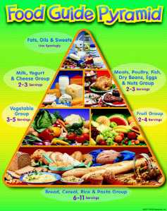 food_guide_pyramid